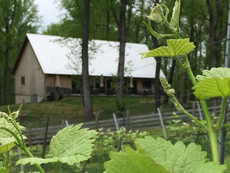 Arterra Wines location of building on a wooded lot, shipping wine club